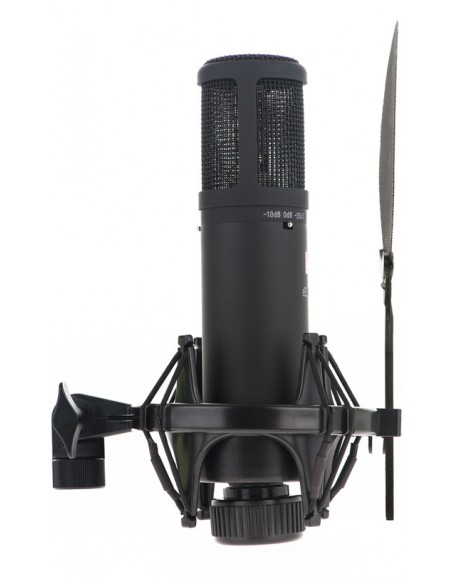 SE Electronics SE2200A II Multi-Pattern Condenser Microphone With Shockmount and Pop Shield