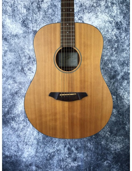 Breedlove D20E Electro Acoustic Guitar - Pre-Loved (Good Condition)