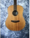 Breedlove D20E Electro Acoustic Guitar - Pre-Loved (Good Condition)
