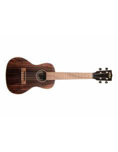 Taylor Academy12E Grand Concert Electro Acoustic Guitar - Left Handed